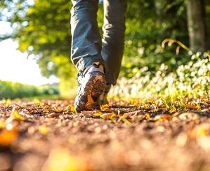 Gå ner i vikt med promenader